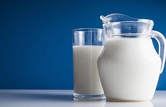 Turkey's milk production up 11.3 pct in August