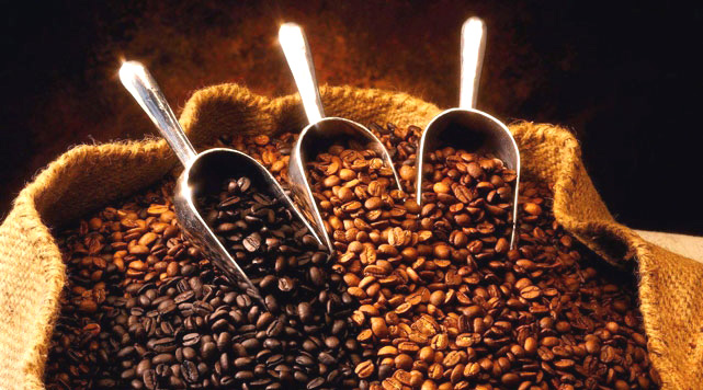 Ethiopia, Africa must add value to coffee exports: ECEA