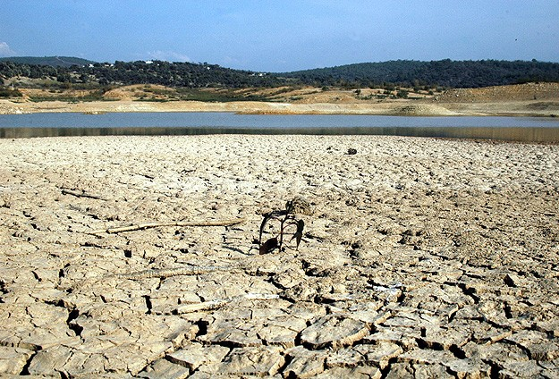 Middle East drought a threat to global food prices