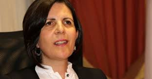 Siber to run in North Cyprus presidential race