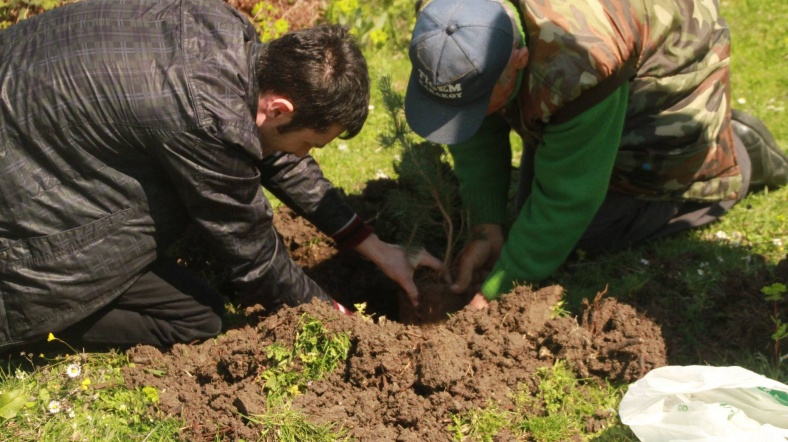 Circassians plant 150 seedlings to mark 150 years in exile