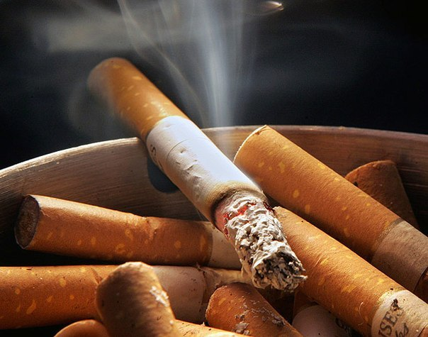 Bulgaria's tobacco industry going up in smoke