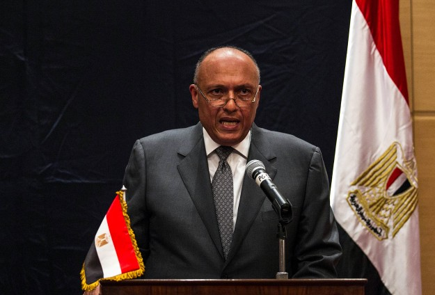 Egypt FM says Syria opposition agrees to go to Moscow