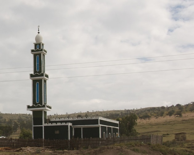 Islamic council to expand social services in Ethiopia
