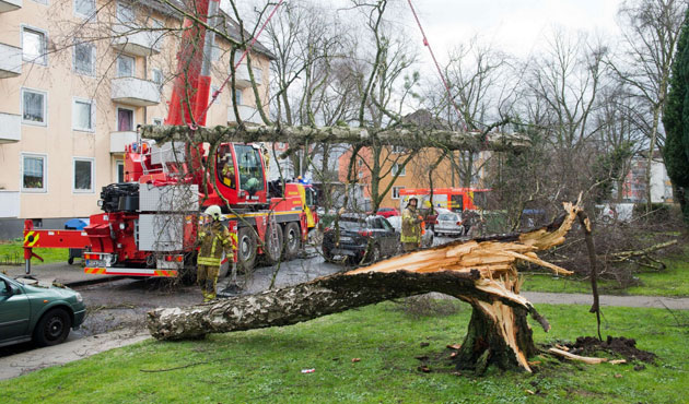 Storm Niklas leaves 9 death in central Europe