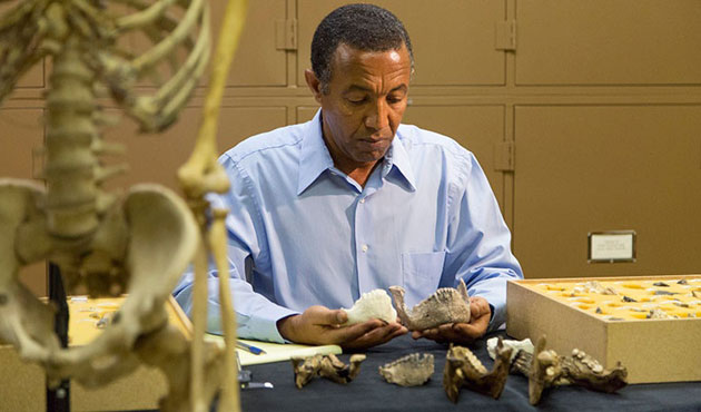 Ethiopia finds 3.5 million years old human fossils