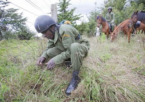 Kenya to launch anti-poaching surveillance network