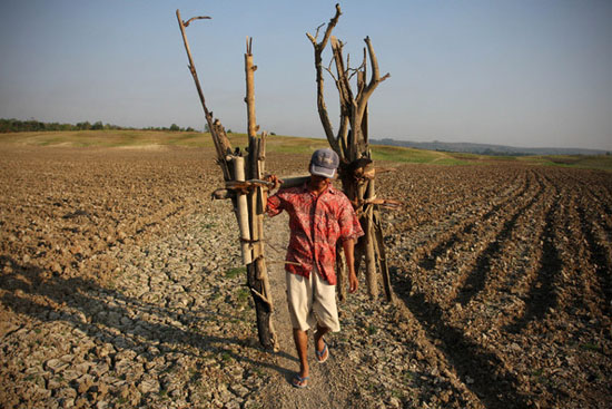 El Nino causes drought in Indonesia
