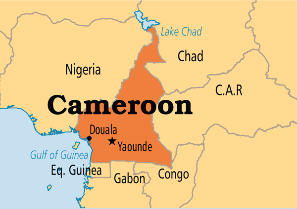 Suicide bomber kills 5 in northern Cameroon mosque