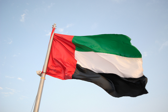 UAE spent $1.1B to help Syria refugees, fight ISIL