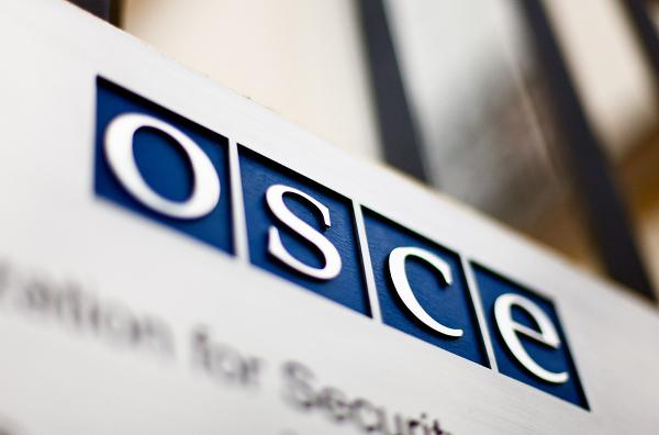 'OSCE observer' imposters exposed as PKK supporters