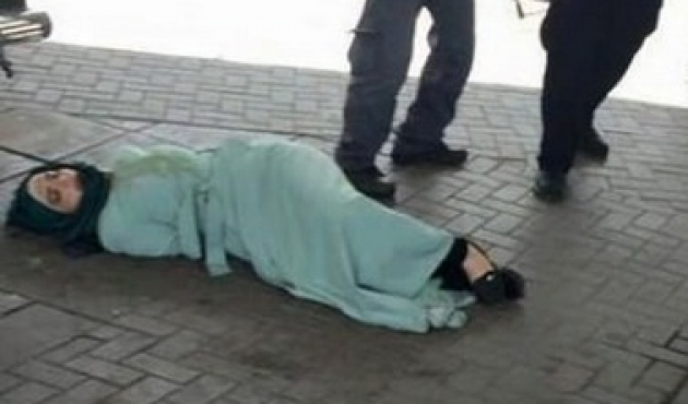 Palestinian mother executed by IDF