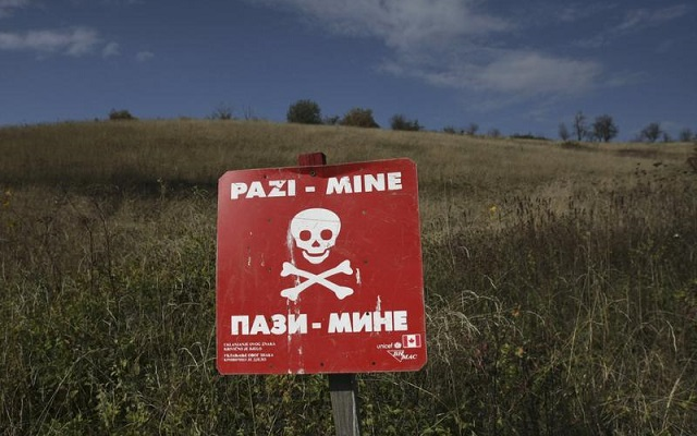 One OSCE staff killed by landmine in east Ukraine