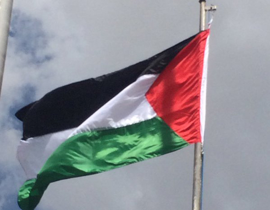 Palestinian flag raised at African UN headquarters