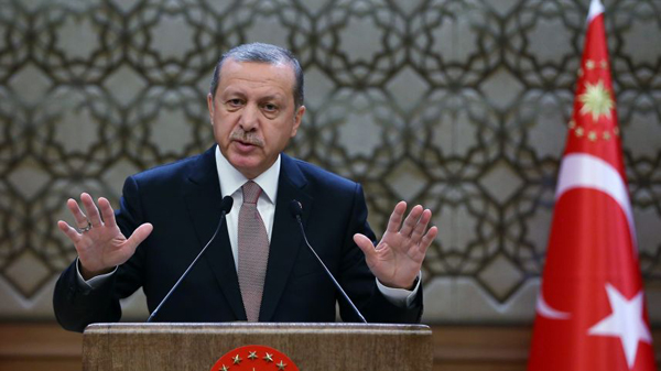Erdogan: Turkey, Israel 'need each other'
