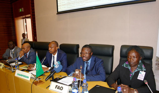 African Union, UN launch anti-hunger project for Horn