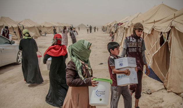 Thousands displaced from Fallujah says Iraqi official