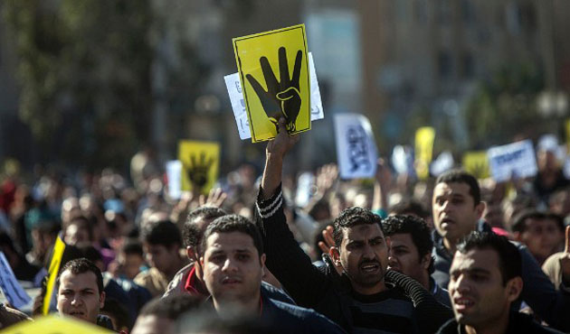 'Egypt's Muslim Brotherhood ready for dialogue'
