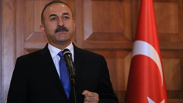 Turkish FM: I will hold a rally in the Netherlands