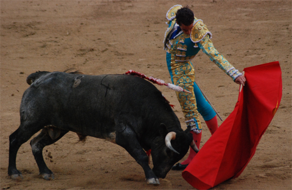 Thousands rally in Madrid to demand bullfighting ban