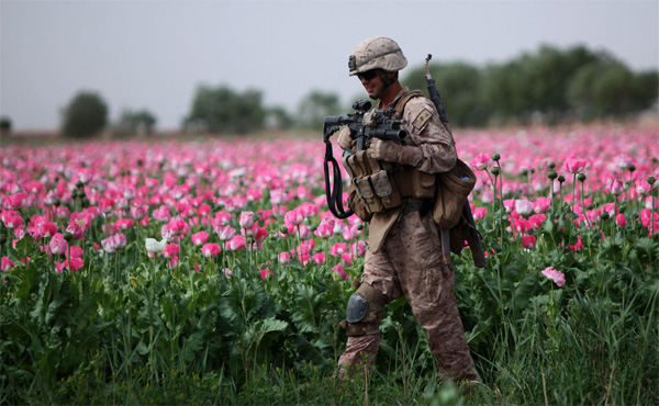 Afghan opium boom to boost US drug cartels