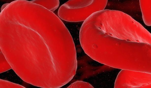 Blood proteins linked to reversing aging