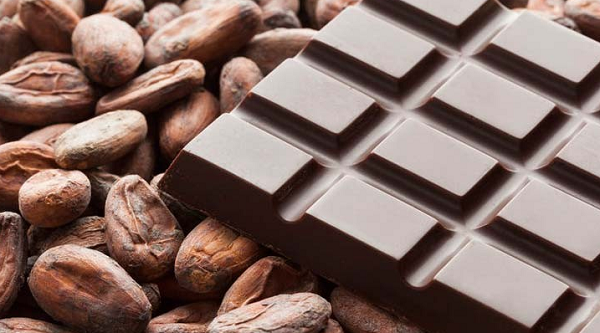 Colombia's 'drug triangle' puts hope in chocolate