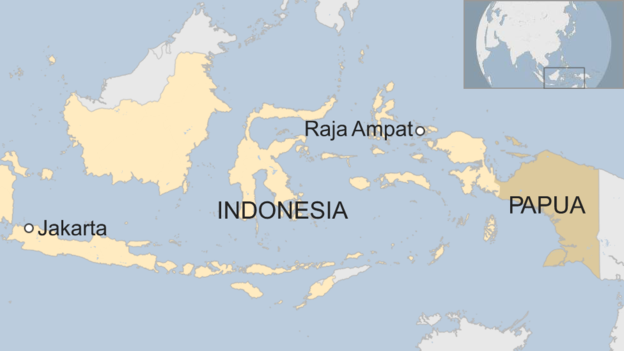 UK cruise ship damages pristine Indonesian coral reef