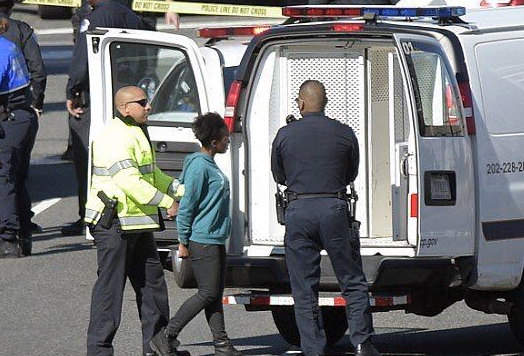 Suspect in custody after incident near US Capitol