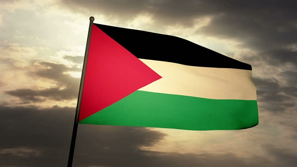 Dublin city hall to fly Palestinian flag in solidarity