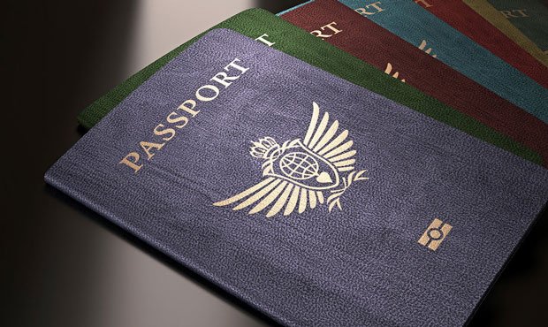 There are Only Four Passport Colors in the World