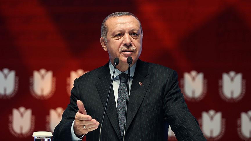 Turkey is fighting terrorist propaganda: Erdogan