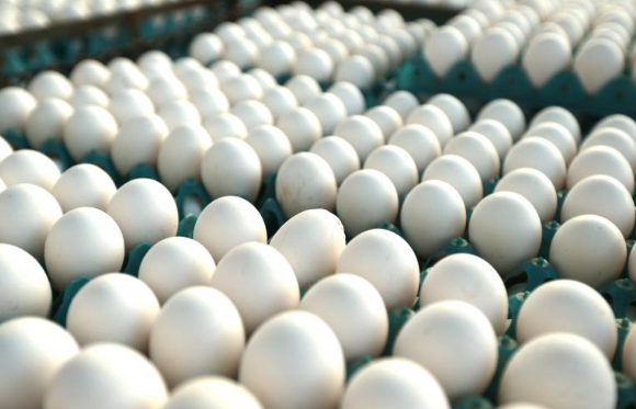 Eggs removed from European shelves over toxicity fears