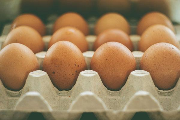 Netherlands found insecticide in eggs in 2016