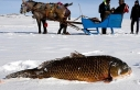 Turkey: Eskimo-style fisher hooks season's biggest...