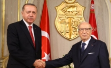 Erdogan's Africa visits a positive phase in relations