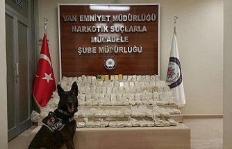 Large number of marijuana seized in Turkey