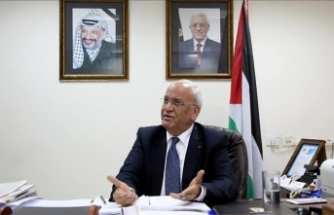 PLO seeks international protection after Israeli raids