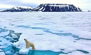 Global warming can cause climate imbalance