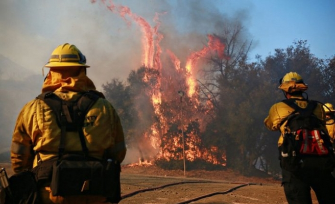 Death toll in California fire rises to 87