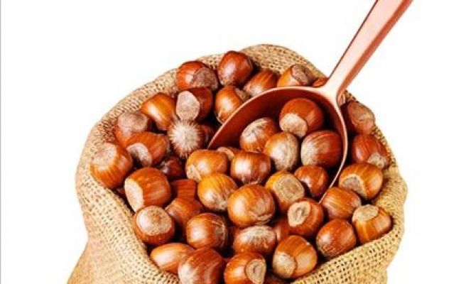 Germany becomes top importer of Turkish hazelnut in 2013