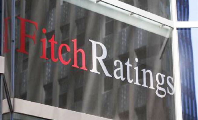 Fitch: Turkish banks should cope with tough year ahead