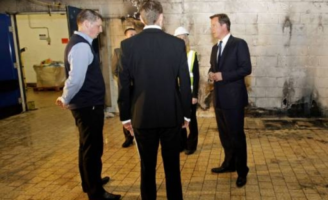 UK's Cameron to get advice from US gang expert