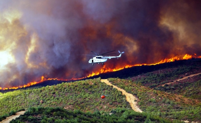 Turkey contains Izmir forest fire before spreading