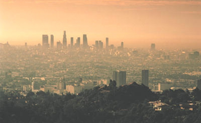 Ozone in smog damages health even at current level