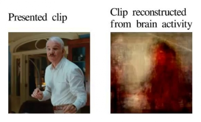 Scientists reconstruct brain images into video