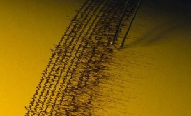 Magnitude 6.8 quake strikes off Chile