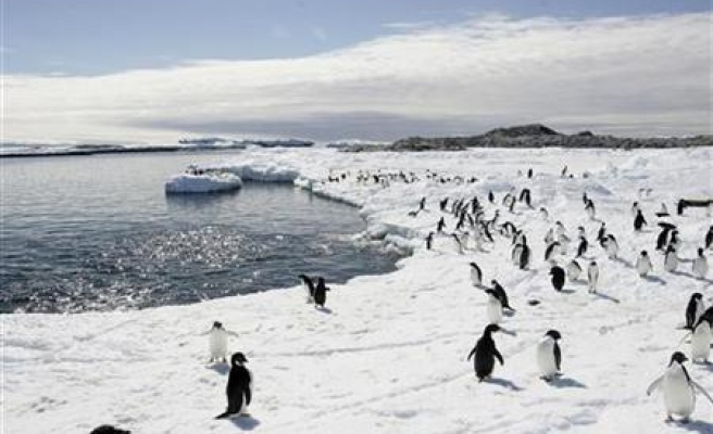 Antarctica's ancient ice growth gives climate clues