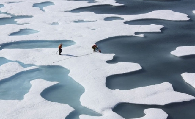 Arctic summer sea ice might thaw by 2015 - or linger for decades