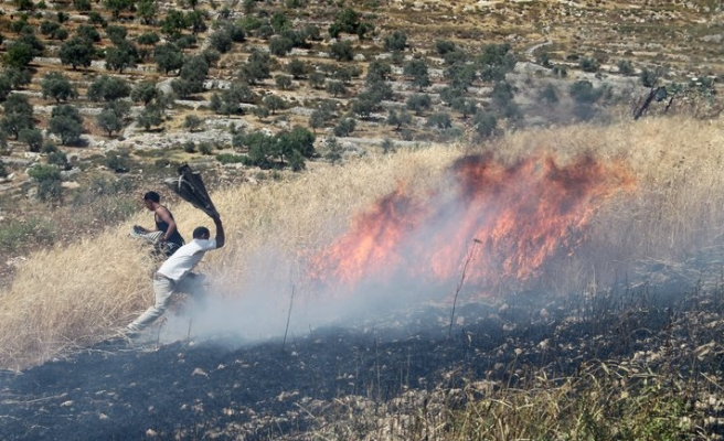 Settlers torch Palestinian home in West Bank